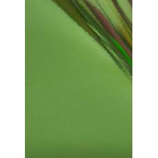 Dona Jerdona фольга 1,5 м глянцевая светло зелёная