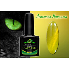 Магнитный гель-лак HR Shellac Cat's Eye 654