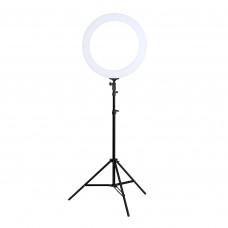 Лампа кольцевая светодиодная 12', Lucas Cosmetics